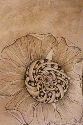 Lori Thompson Drawing - Filtered Flower by Lori Thompson