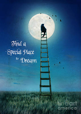Photograph - Find A Special Place To Dream by Jill Battaglia