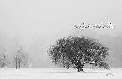 Find Peace In The Stillness Art Print by Ed Cilley