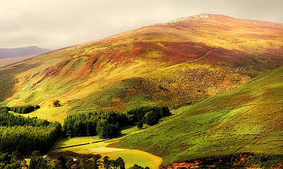 Find The Soul. Golden Hills Of Wicklow. Ireland Art Print by Jenny Rainbow
