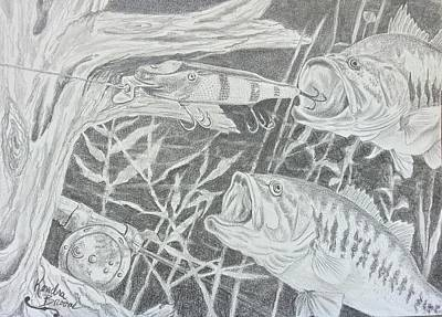 Largemouth Drawing - Finders Keeper Loosers Weepers  by Kendra DeBerry