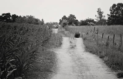 Photograph - Finding My Way by Sarah Boyd