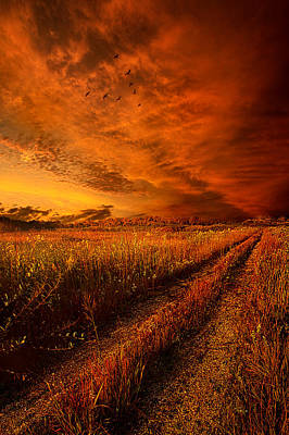 Flight Formation Photograph - Finding The Way Home by Phil Koch