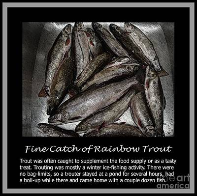 Fine Catch Of Rainbow Trout Art Print by Barbara Griffin