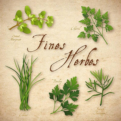 Italian Kitchen Digital Art - Fines Herbes - French Herb Blend by J M Designs