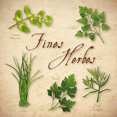 Fines Herbes - French Herb Blend Art Print