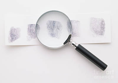 Photograph - Fingerprints And Magnifying Glass by Dave King / Dorling Kindersley