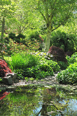 Photograph - Finnerty Gardens Pond by Marilyn Wilson