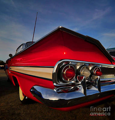 Photograph - Fins Are In by Randy Rogers