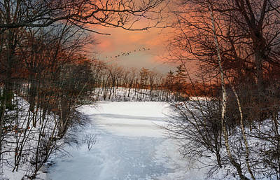 Photograph - Fire And Ice 2 by Robin-Lee Vieira
