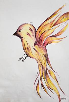 Griffon Drawing - Fire Bird by Jonathan Shepherd