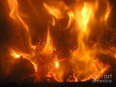 Photograph - Fire - Burning Love by Eva-Maria Di Bella