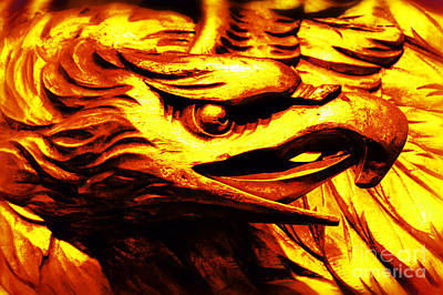 Kitchen Spices And Herbs - Fire Eagle by Joe Geraci