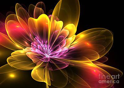 Fire Flower Art Print by Svetlana Nikolova