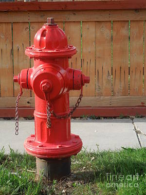 Photograph - Fire Hydrant 3 by Richard W Linford
