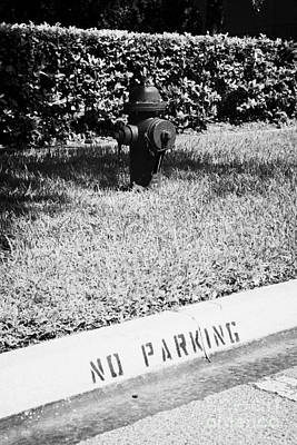 Fire Hydrant No Parking Curb In Residential Area Of Celebration Florida Usa Art Print by Joe Fox