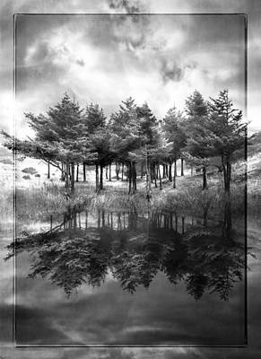 Trees And Lake Photograph - Fire In Black And White by Debra and Dave Vanderlaan