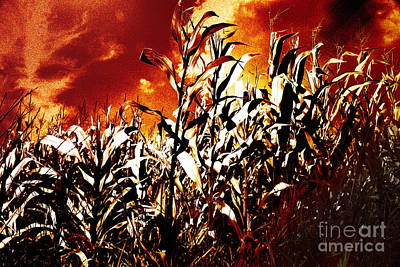 Corn Mixed Media - Fire In The Corn Field by Gaspar Avila