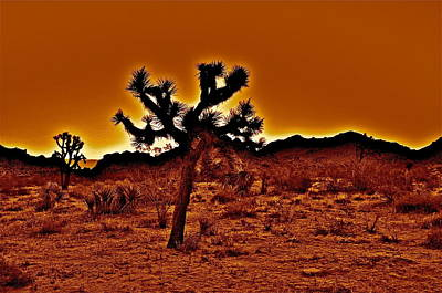 Photograph - Fire In The Desert by Joe  Burns
