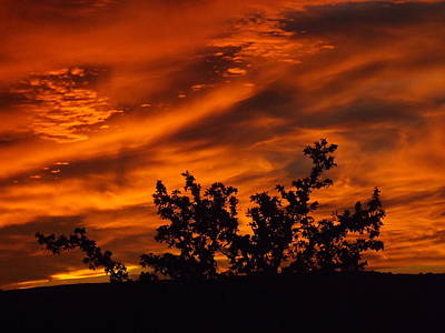Photograph - Fire In The Skies by Rebecca Cearley
