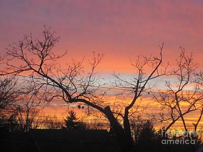 Photograph - Fire In The Sky 1 by Tara  Shalton