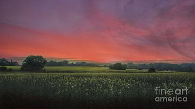 Photograph - Fire In The Sky by Lee-Anne Rafferty-Evans