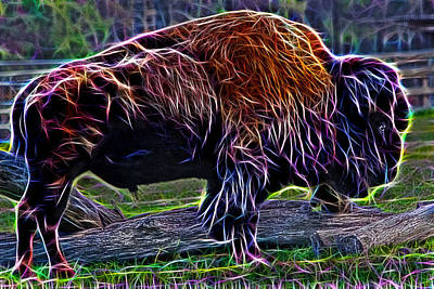 Photograph - Fire Of A Bison  by Miroslava Jurcik