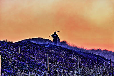 Fire On The Dunes Art Print by Tony Reddington