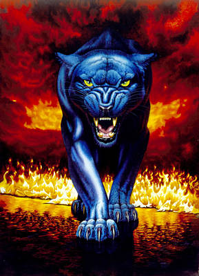 Panther Photograph - Fire Panther by MGL Studio - Chris Hiett