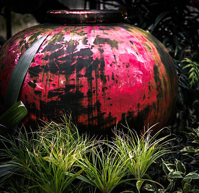 Going Green Photograph - Fire Pot by Karen Wiles