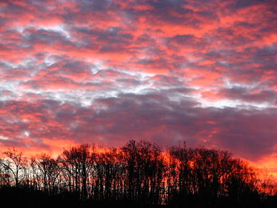 Fire Sky Art Print by Cleaster Cotton