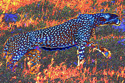 Cheetah Digital Art - Fire Spirit by Philip Brent