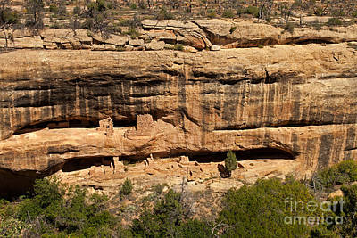 Photograph - Fire Temple Mesa Verde National Park by Fred Stearns