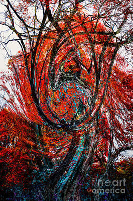 Photograph - Fire Tree by Michael Arend