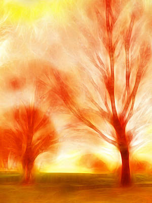 Burnt Wood Photograph - Fire Trees by Sharon Lisa Clarke