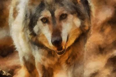 Canines Digital Art - Fire Wolf by Ernie Echols