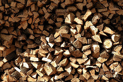 Firewood Photograph - Firewood by Olivier Le Queinec