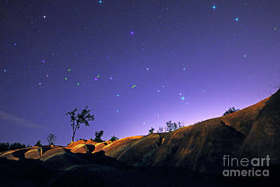Photograph - Fireflies Under Starry Sky by Charline Xia