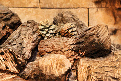 Pine Cones Photograph - Fireplace Logs by Linda Phelps