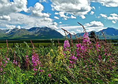 Photograph - Fireweed And Mountains In Alaska by Kirsten Giving