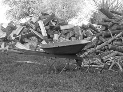 Country Scenes Photograph - Firewood Hauler by Heather Allen