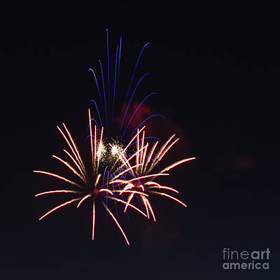 Photograph - Fireworks 6 by Sonya Lang