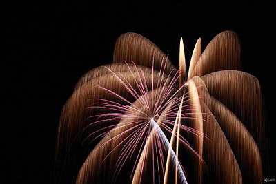 Forth Of July Photograph - Fireworks 8 by Andrew Nourse