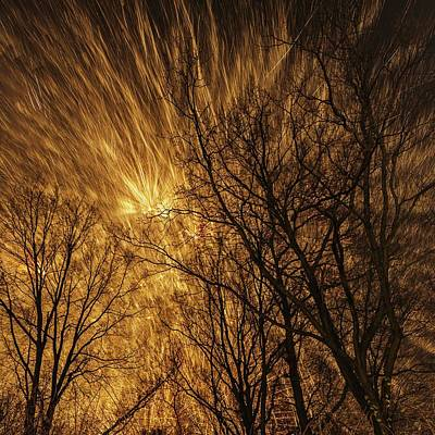 Fireworks And Trees Art Print by Babak Tafreshi