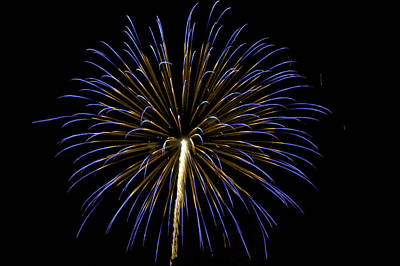 Photograph - Fireworks Bursts Colors And Shapes 3 by SC Heffner