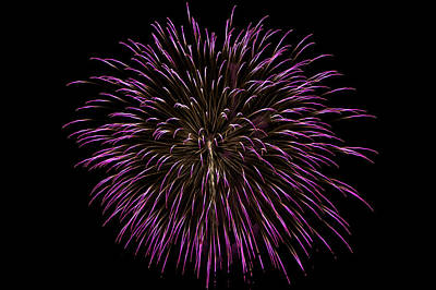 Photograph - Fireworks Bursts Colors And Shapes 5 by SC Heffner