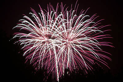 Photograph - Fireworks Bursts Colors And Shapes 7 by SC Heffner