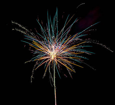 Photograph - Fireworks - Explosive Flower by Scott Lyons