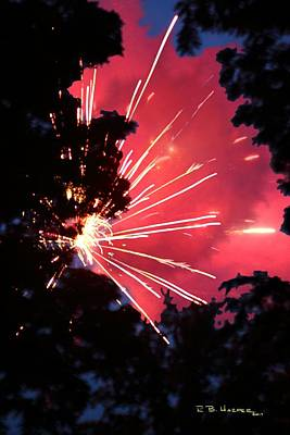 Photograph - Fireworks Forest by R B Harper
