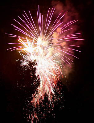 Fire Works Photograph - Fireworks In The Tree by Angie Wingerd